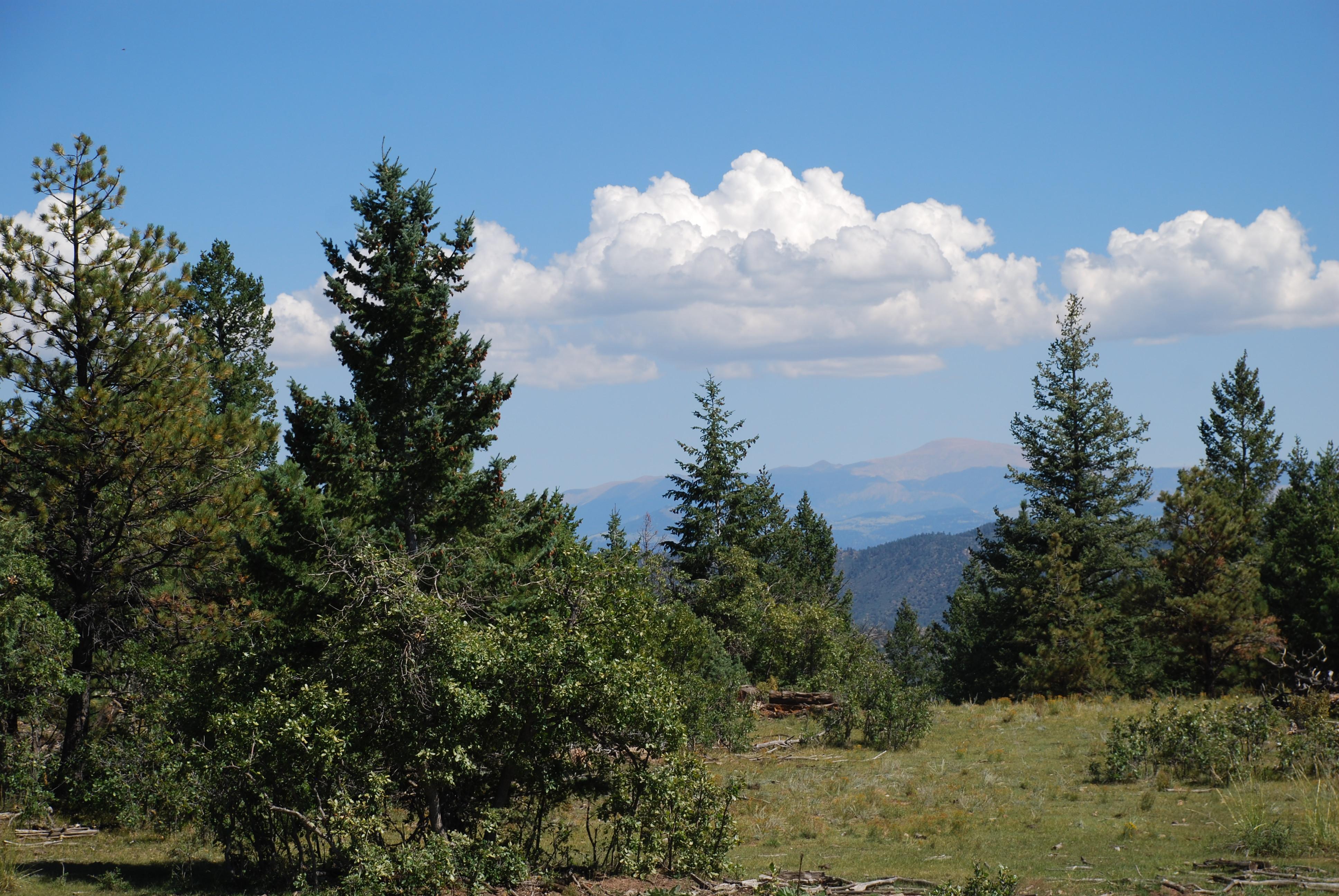 Gardner Peak Ranch Lot 6