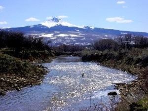 Gurley Creek