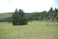 Hunting Camp_0052