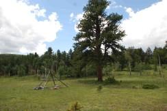 Hunting Camp_0053