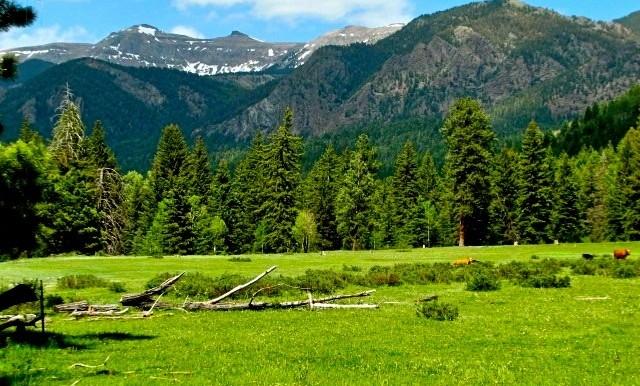 1500 Acres  Alpine Setting