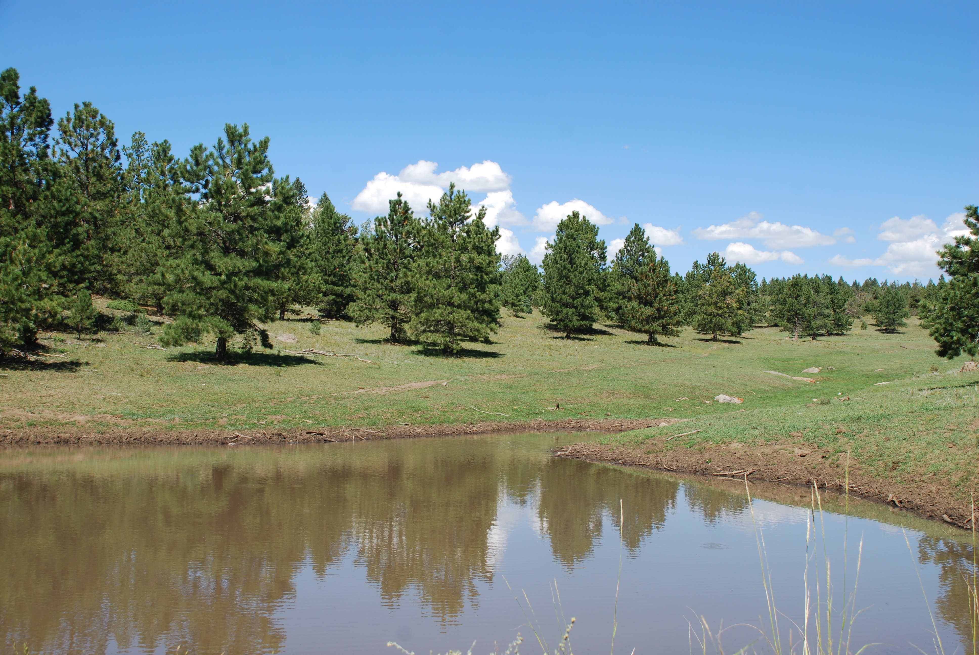 Gardner Peak Ranch Lot 8