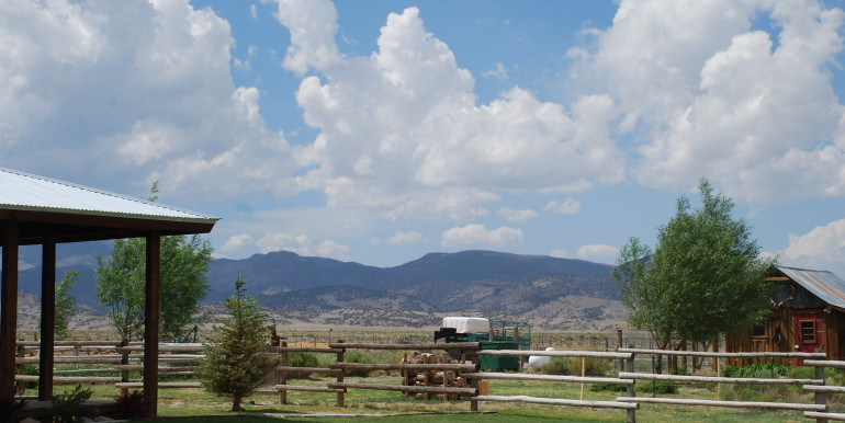 Colorado Living on 80 Acres