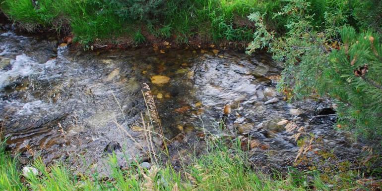 Creek behind house