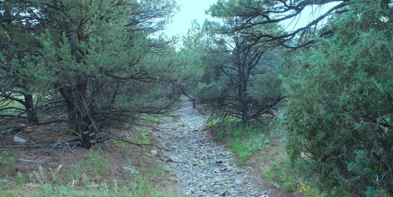 Dry creek bed
