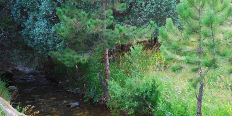 Hayden Creek 1