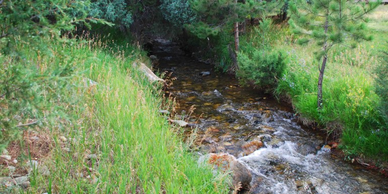 Hayden Creek
