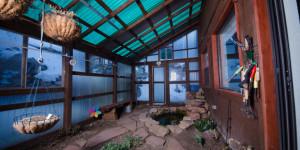 Indoor Gardening - cotopaxi